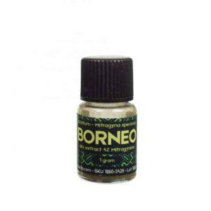 Kratom Borneo Re Extrakt 4% - Sacred Plants