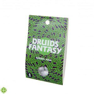 Druids Fantasy